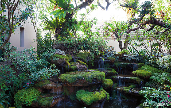 Tropical Rainforest With Zen Accent