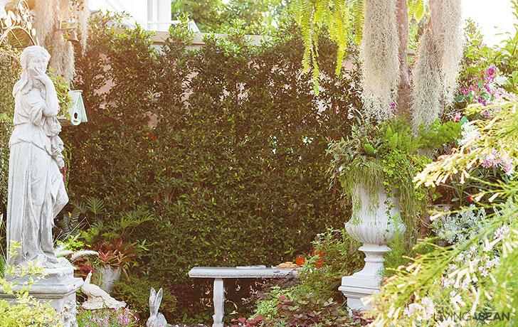 A Little English Garden