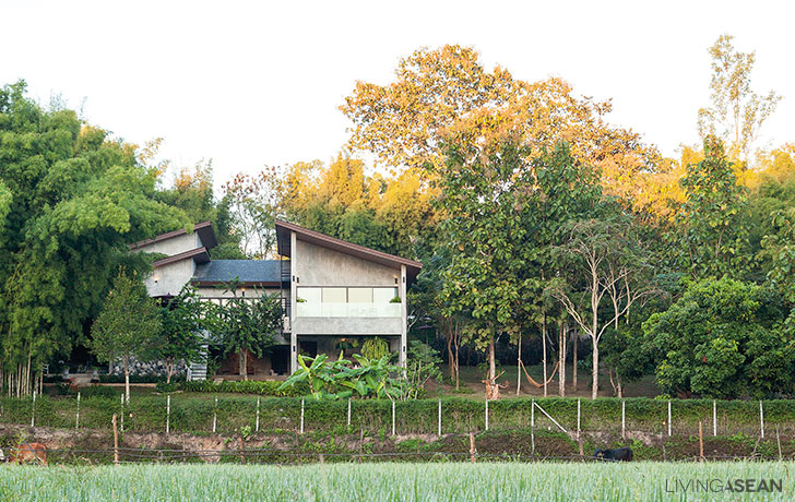 Raw Concrete House in Paddy Fields
