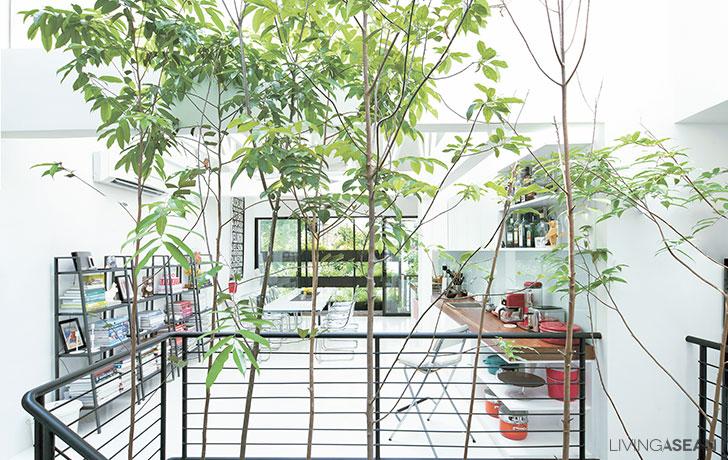 Open Plan Urban Home / Home Renovation