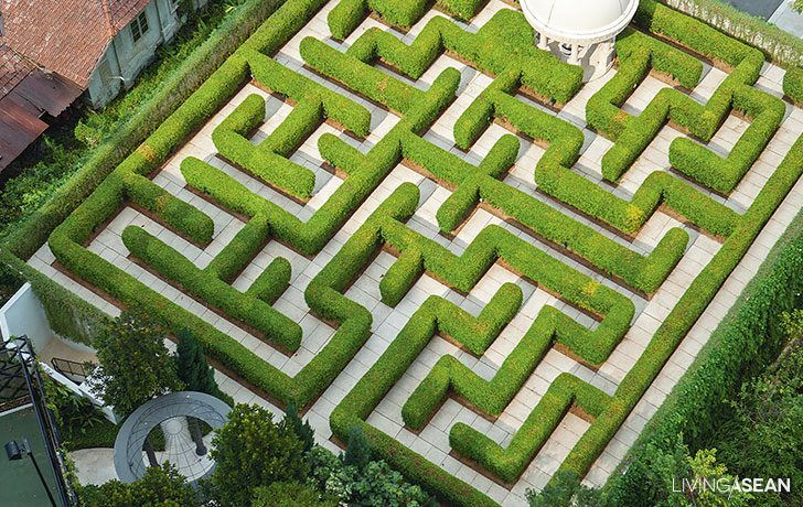 Amazing Maze Garden / Enjoy a Walk in the Garden Maze