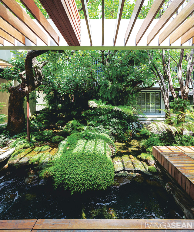 """View from the side of the verandah into the delightful """"tropical garden style"""" pond in the courtyard between the two houses."""