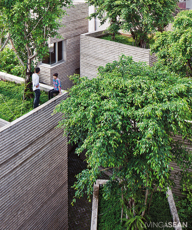 The varying heights enable residents to view nature from various angles. Ona roof it is easier to water the trees planted up so high.