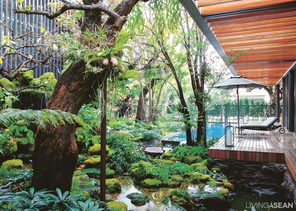 A garden hugs the house, with beautiful branches curving this way and that adding motion to the lush tropical resort atmosphere the owners really love
