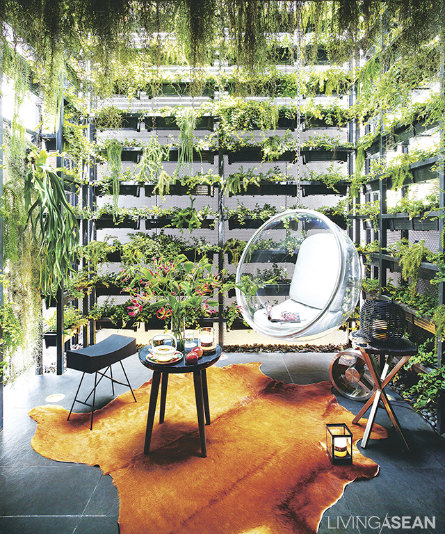 The back area of the townhome is transformed into a super-hip vertical garden. Here you can lounge around in this hanging modern-looking bubble chair made of clear acrylic.