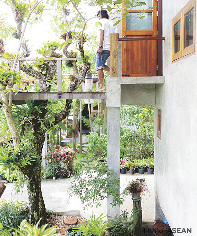 A thriving Pride-of-India tree shoots right through an opening in the second floor balcony. It is the intention of the homeowner to let nature permeate the living spaces where possible.