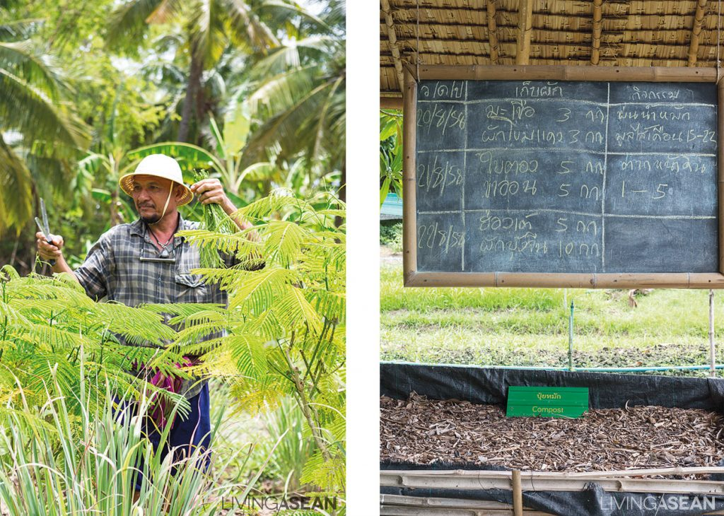 Anirut, lovingly called the local wise man, is always there to share his knowledge with visitors. /// His blackboard shows the timetable, tips, and tricks for growing plants, making compost, and care for the vegetable gardens.