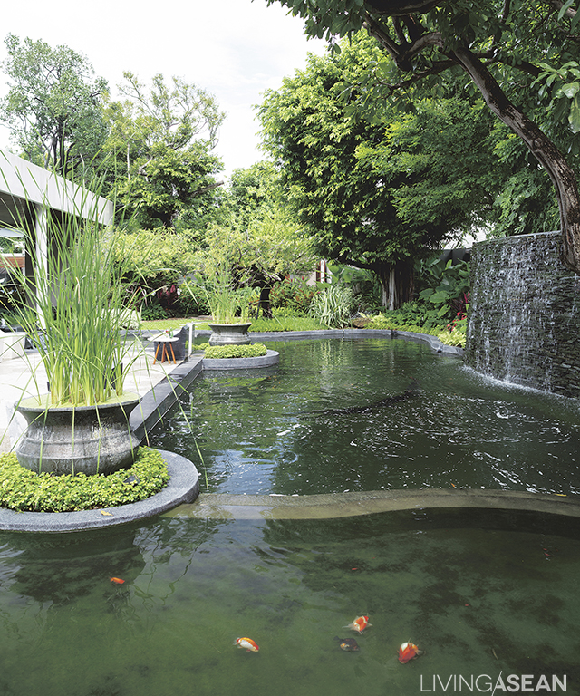 Picture perfect home in a rainforest garden living asean for Garden pond amazon