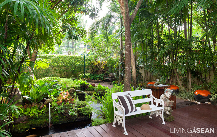 Stunning Authentic Tropical Garden