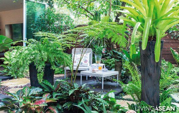 Tropical Garden Ideas for Big Family