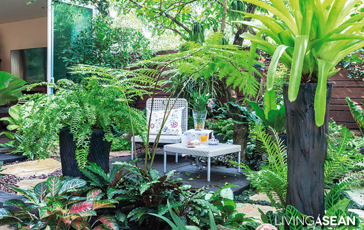 tropical garden ideas for big family
