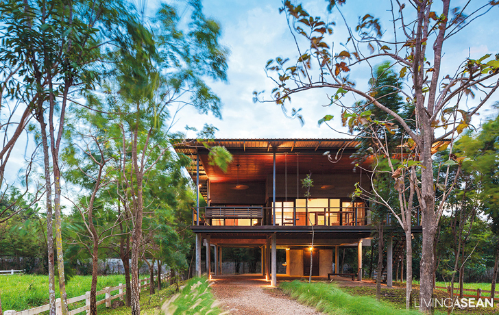 Modern House in a Forest Setting