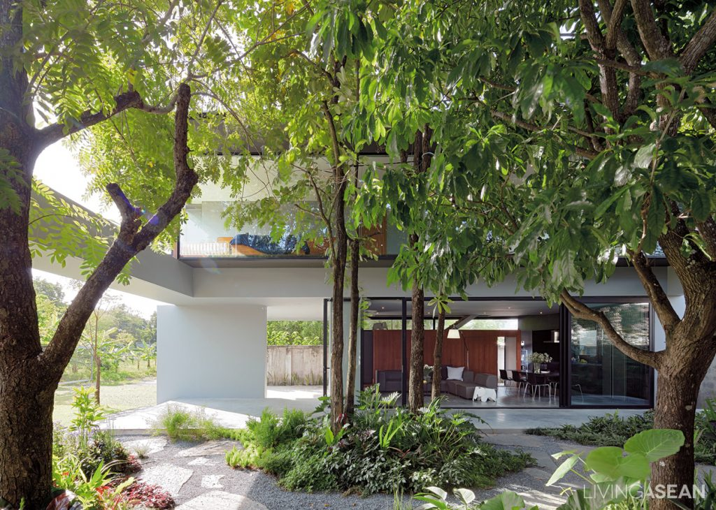Box-Shaped House with a Tropical Style Garden