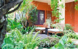 Tropical Garden for Extended Family