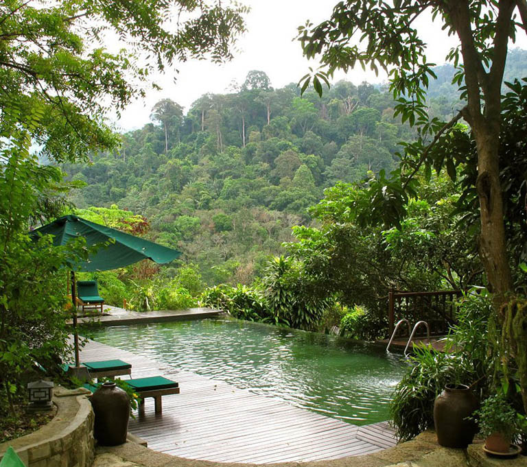 The Dusun 10