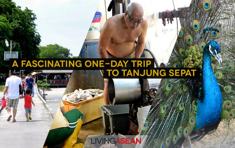 A Fascinating One-Day Trip to Tanjung Sepat