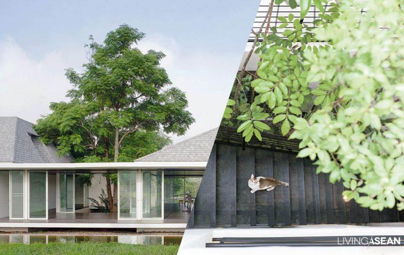 9 Best Ideas for Gorgeous Internal Courtyards