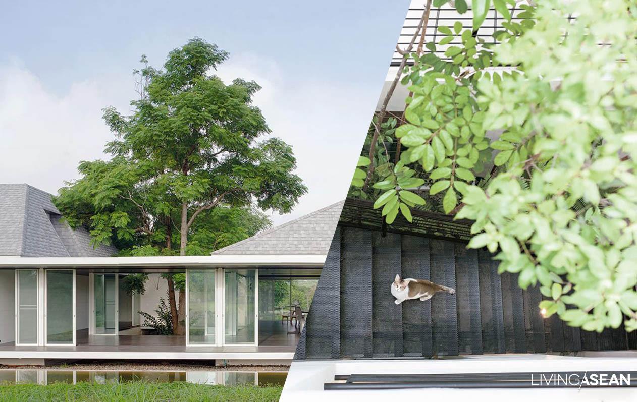 livingasean inspiring tropical lifestyle living design 9 best ideas for gorgeous internal courtyards home ideas
