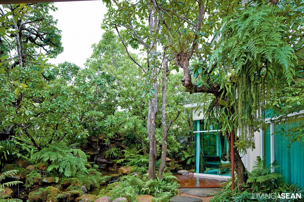 Rainy Season Forest Garden For Tropical Areas Living