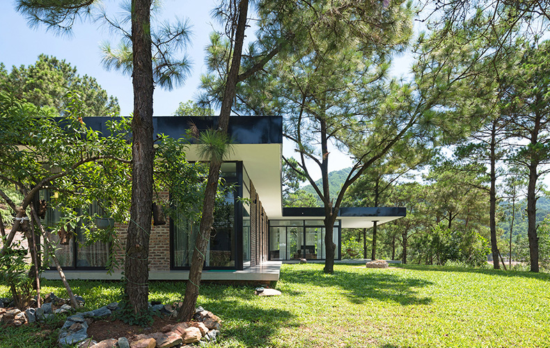 House Under The Pines
