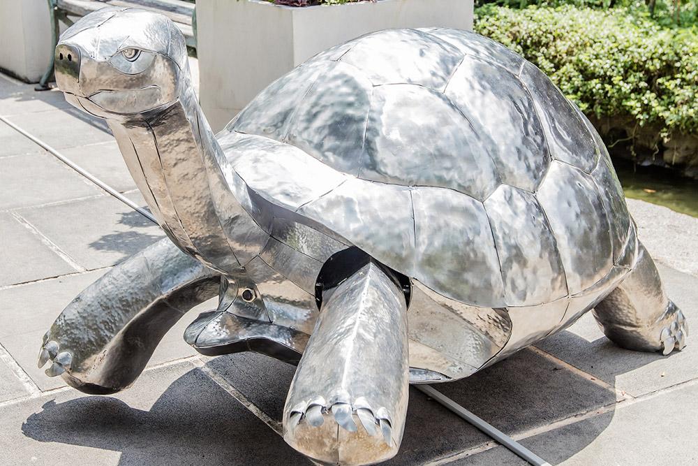 Turtle Religion by Krit Ngamsom | Photo courtesy of Media Hub