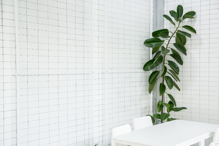 About White Café & Bistro