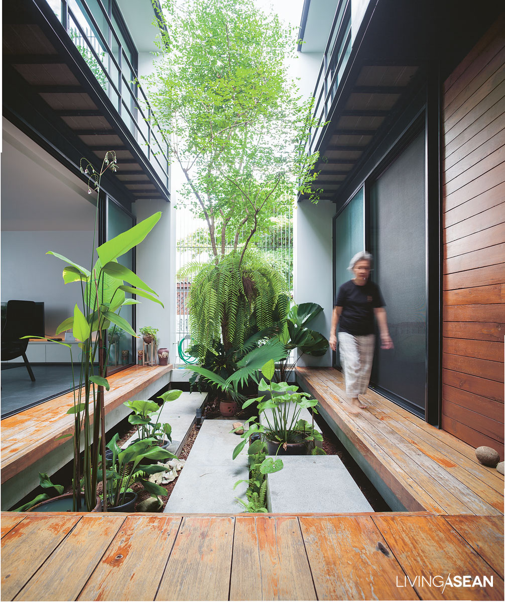 The raised passageway around the courtyard is built of old wood worn by long exposure to the weather. Concrete steps provide easy access to the garden floor. It's a place to sit with your legs hanging down, enjoy a patch of greenery, and shoot the breeze on a lazy afternoon.
