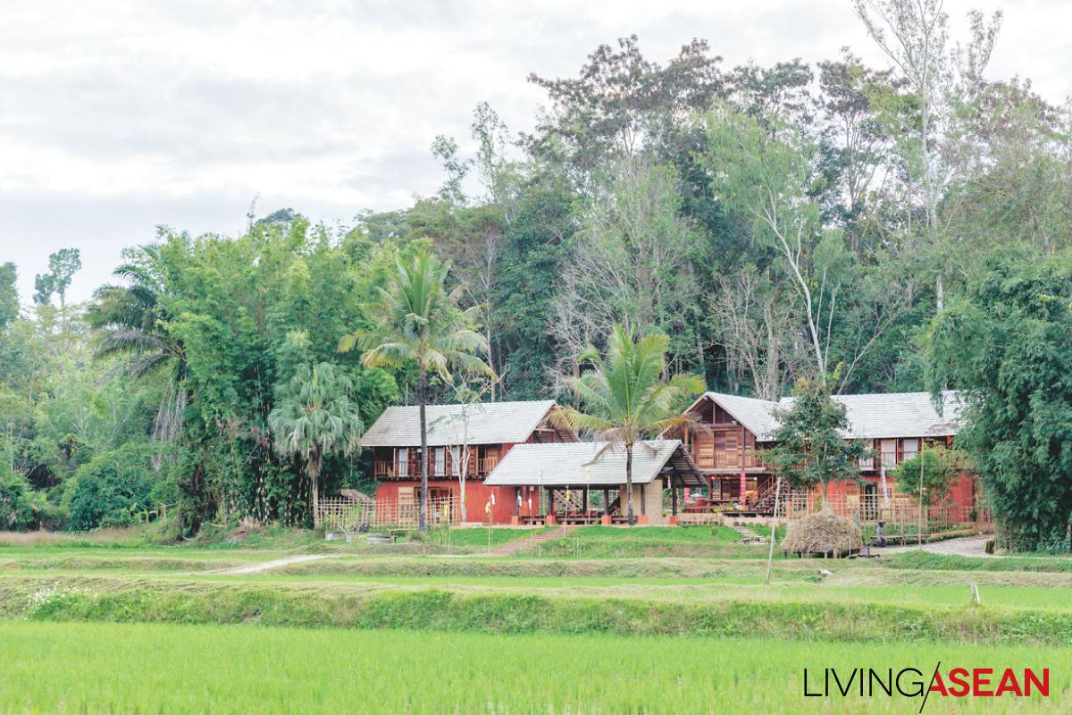 Modern Vernacular Homes