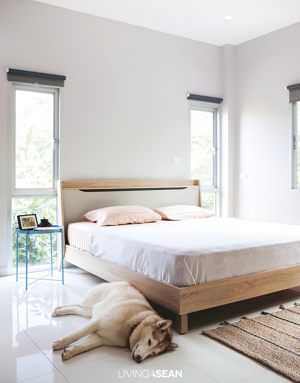The bedroom is furnished with just the bare necessities consisting of a bed, sideboard, and desk. Open plan design makes perfect sense in a situation where dogs are allowed to sleep in the bedroom.