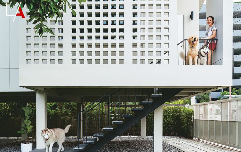 A Stunning Breeze Block House for Avid Dog Lovers