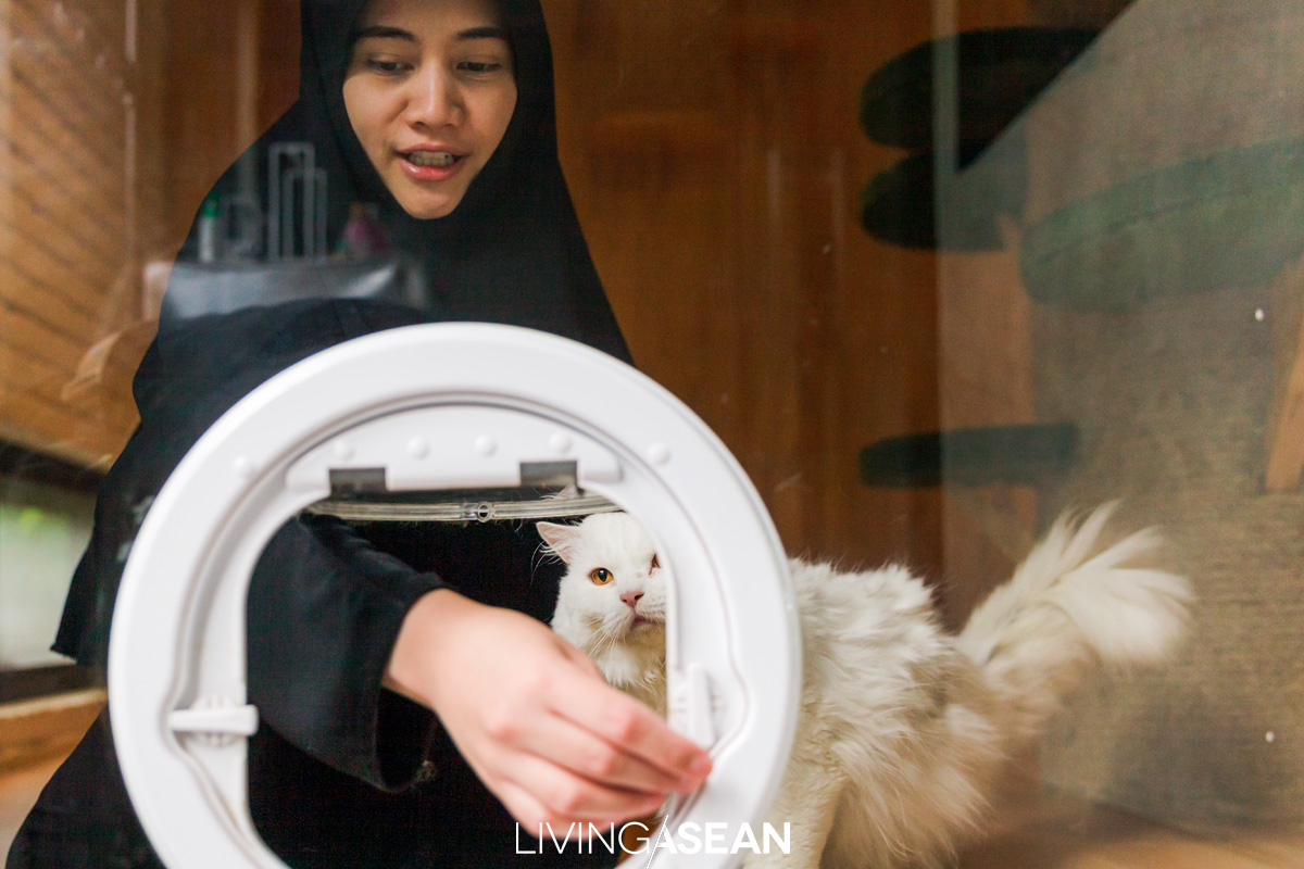 A flap door lets kitties come and go freely between the cat house and the litter box located in an open-air laundry area.