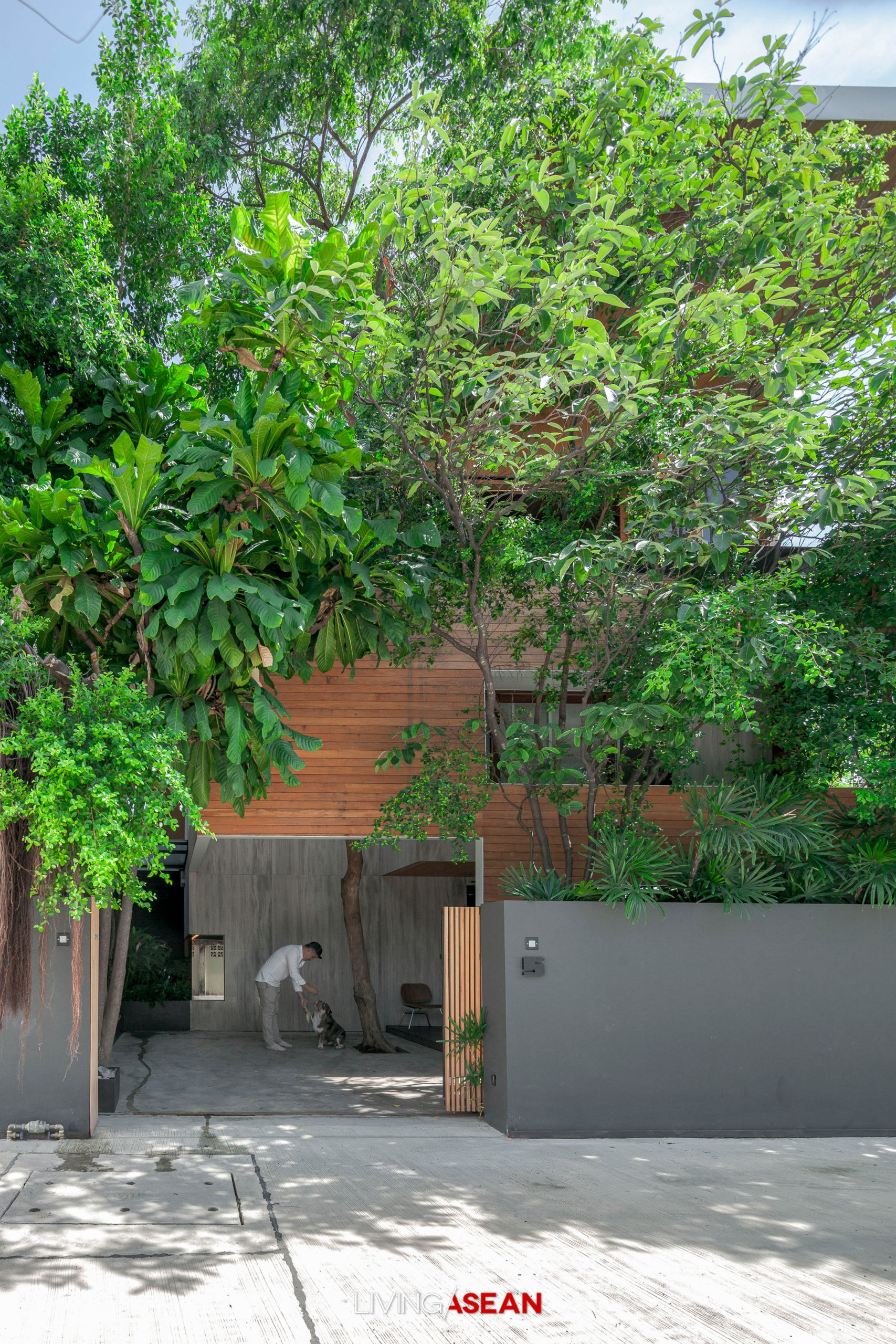 A Minimalist House with the Warm Elegance of Wood